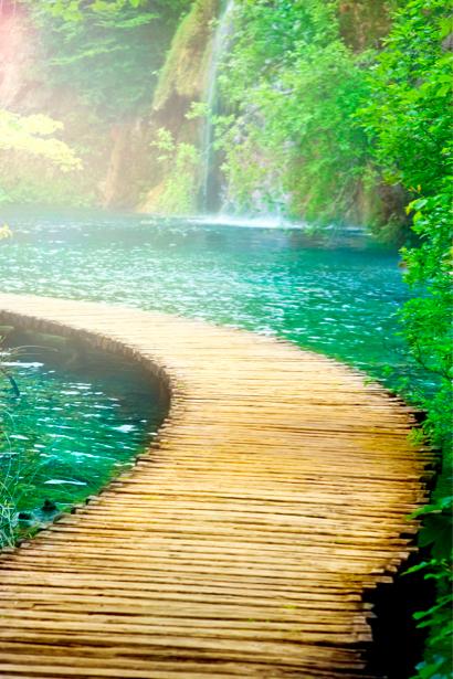 Фотообои с природой мост через реку (nature-00145)