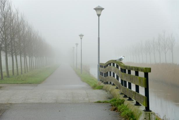 Фотообои природные пейзажи мост набережная (nature-00167)