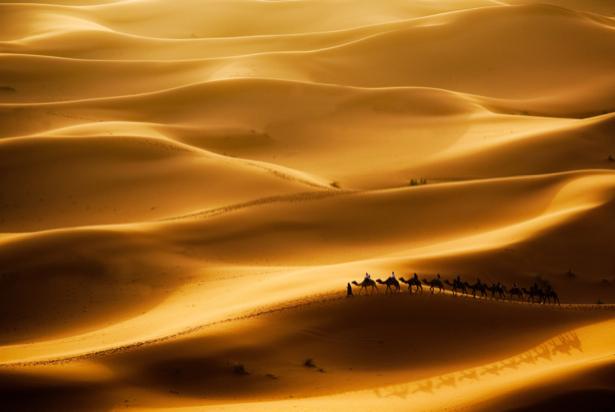 Фотообои барханы пустыня (nature-00598)