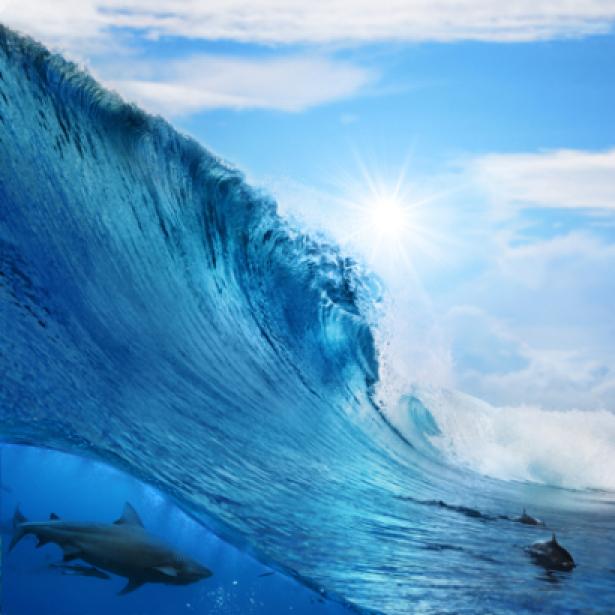 Фотообои высокая волна (sea-0000057)