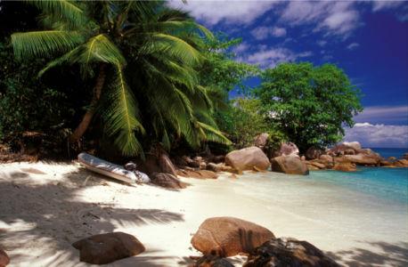 Фотообои море берег остров пальмы (sea-0000277)