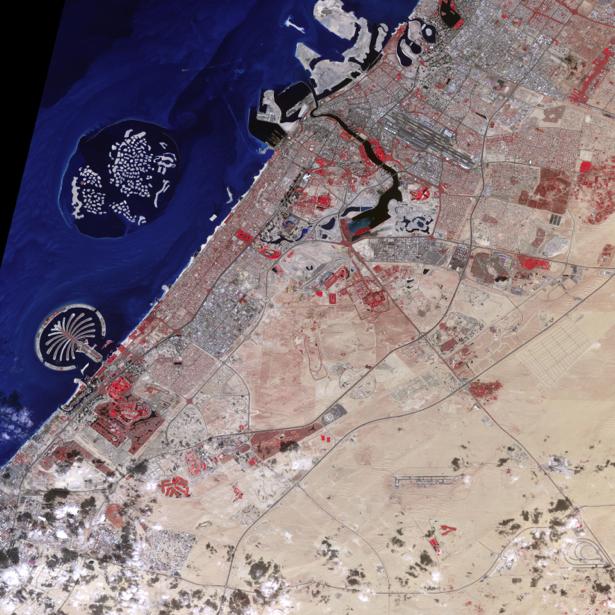 Фотообои на заказ дубаи (terra-00144)