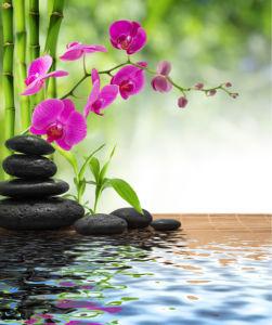 Обои фото орхидея, камешки, бамбук (flowers-0000538)