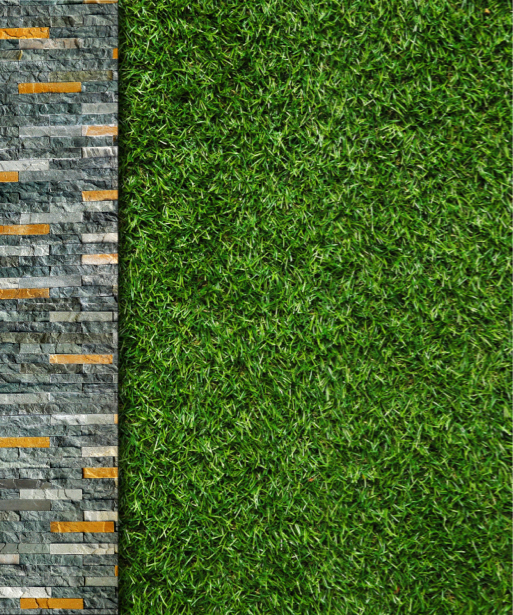 Фото обои обои на стену трава (flowers-0000591)
