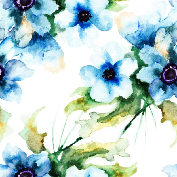 Фото обои цветы голубые незабудки (flowers-0000679)