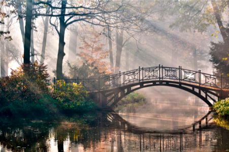 Фотообои с природой пруд и мостик (nature-00006)