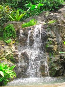 Фотообои с природой вода на камне (nature-00019)