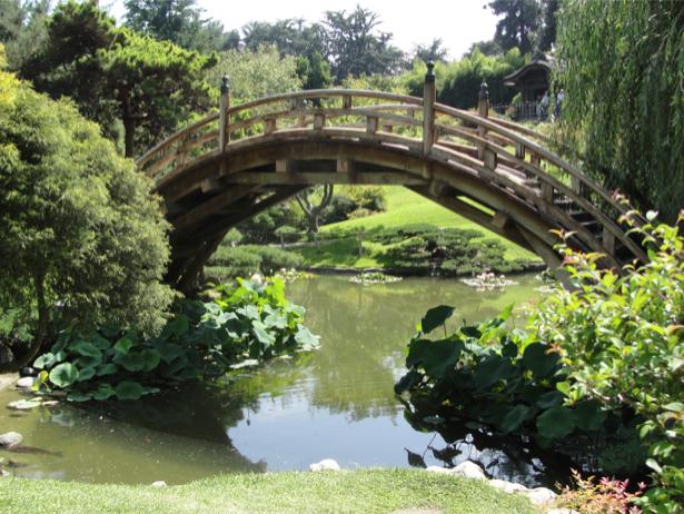 Фотообои вид на мост и озеро (nature-00230)