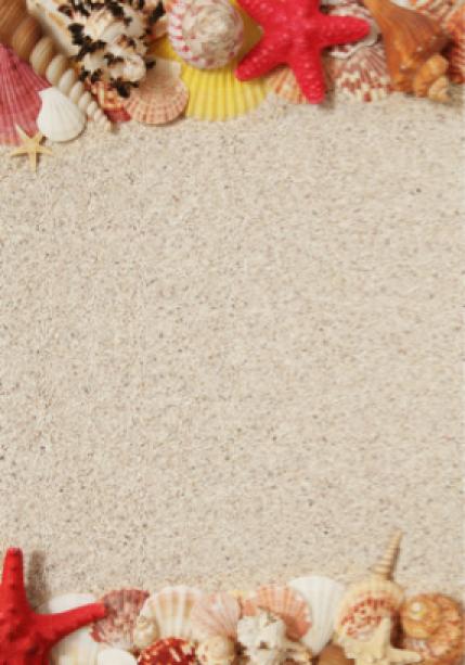 Морские ракушки на песке - Фотообои (sea-0000107)