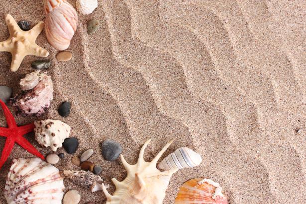 Фотообои для ванны с ракушками (underwater-world-00096)