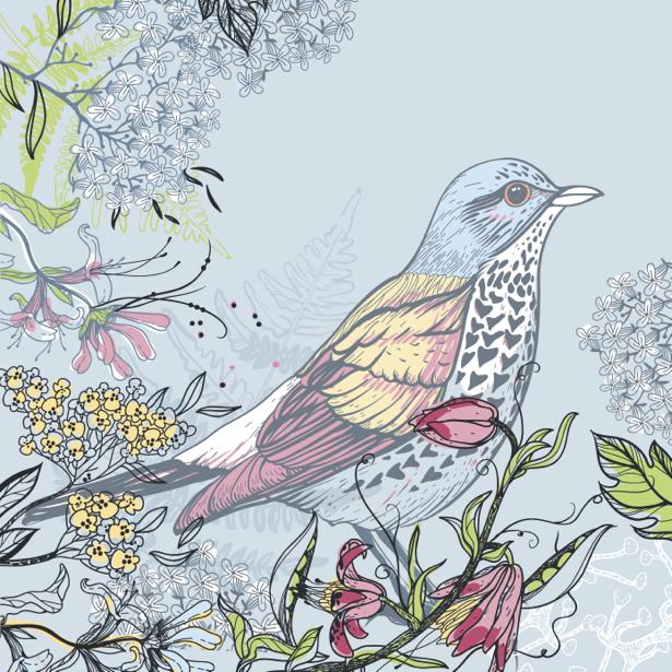Фотообои сизая рисованная птица (animals-0000398)