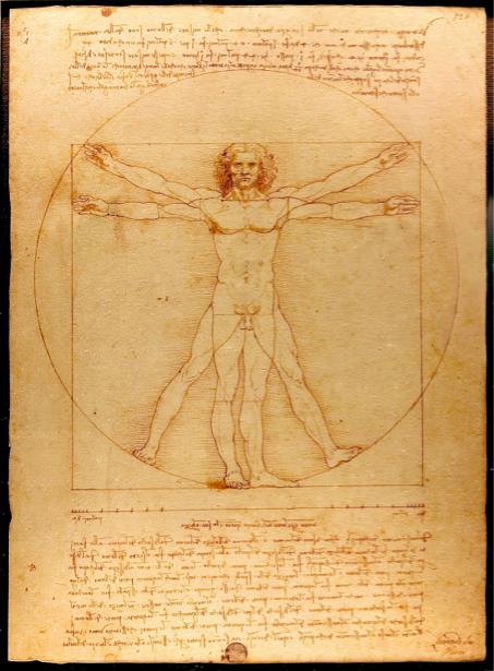 Леонардо да Винчи, рисунок (art-0000145)