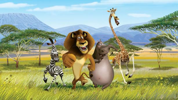 Фотообои Мадагаскар (child-570)