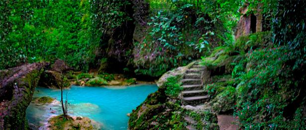 Фотообои с природой озеро в лесу (nature-00109)
