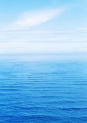 sea-0000164