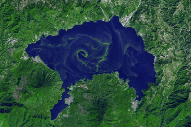 Фотообои озеро в зелени (terra-00247)