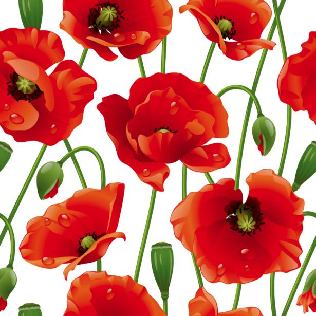Обои для стен Паттерн маки (flowers-0000715)