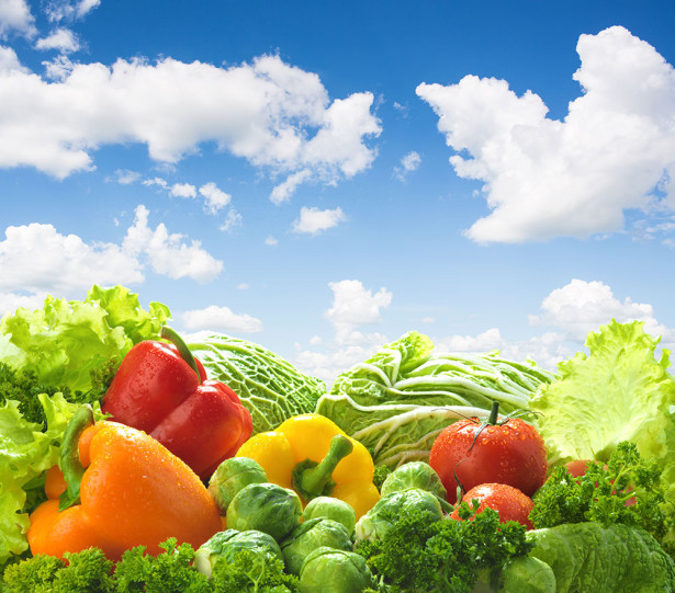 фотообои с перцами и капустой (food-332)