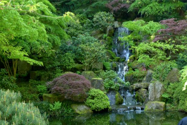 Фотообои горный водопад летом (nature-00416)