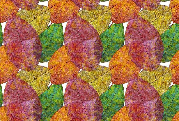 Скатерть Цветные листья (0157)