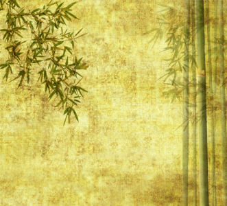 Фотообои в зал на стену Бамбук (flowers-0000207)