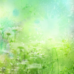 flowers-0000688