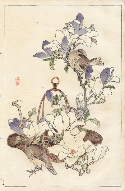 Коно японская графика птицы (japanese-chart-6)