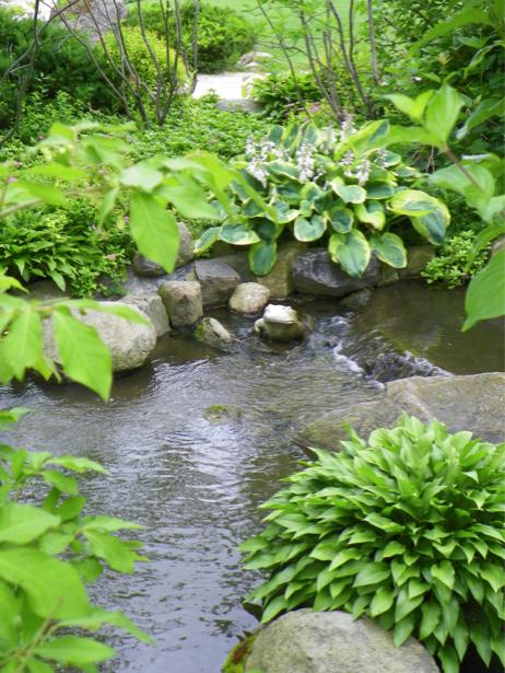 Фотообои с природой ручей (nature-00025)