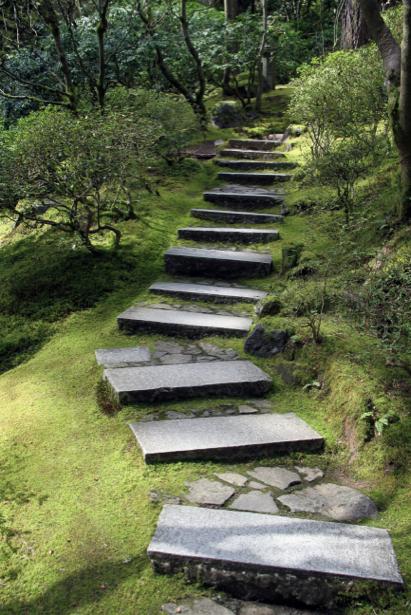 Фотообои дорога лестница в парке (nature-00401)