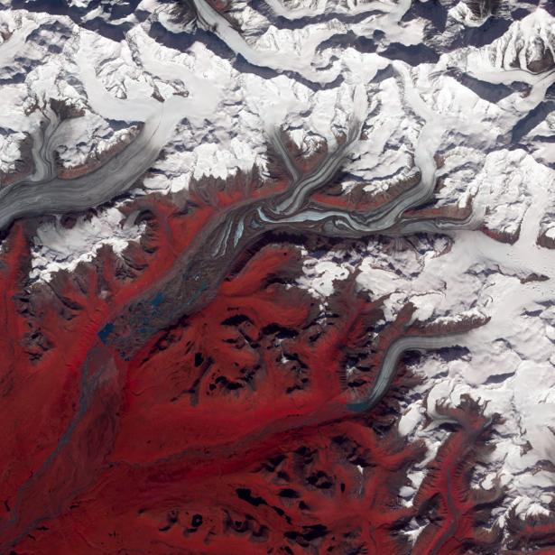 Фотообои фото белое и красное (terra-00115)