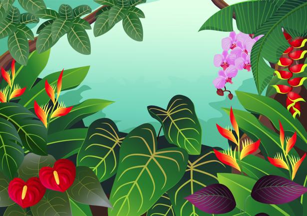 Детские фотообои тропические растения (children-0000226)