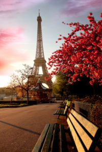Фотообои Эйфелева башня, Франция (city-0000033)