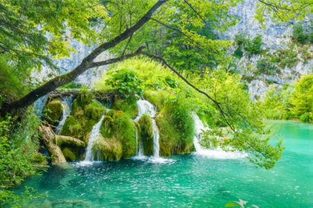 Фотообои водопад лес деревья фото (nature-0000831)