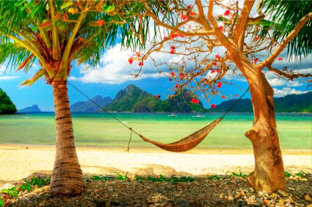 Фотообои с природой пальмы и море (nature-00026)