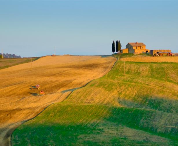 Фотообои пейзаж с полем и домиком (nature-00195)