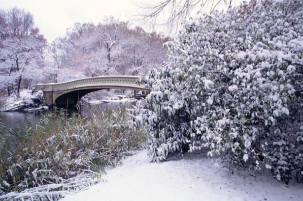 Фотообои зима мост река в снегу (nature-00221)