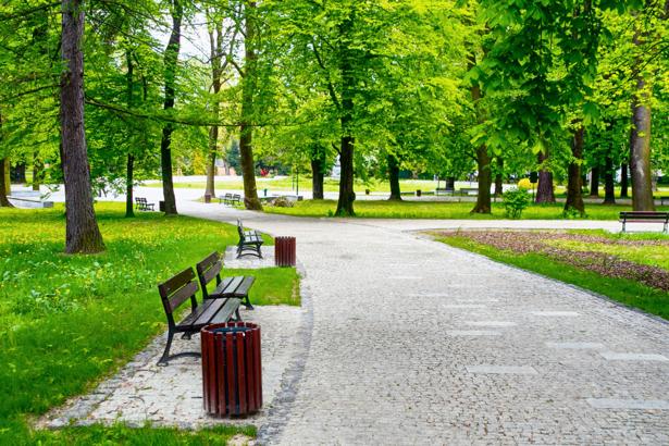 Фотообои парк отдыха (nature-00532)