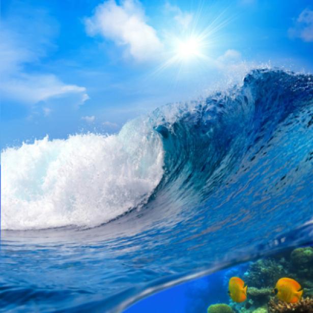 Фотообои волна гребень волны (sea-0000056)
