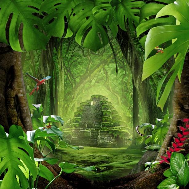 Фотообои в детскую сказочный лес пирамида (fantasy-0000151)