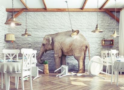 Фотообои Слон в интерьере (loft-3)