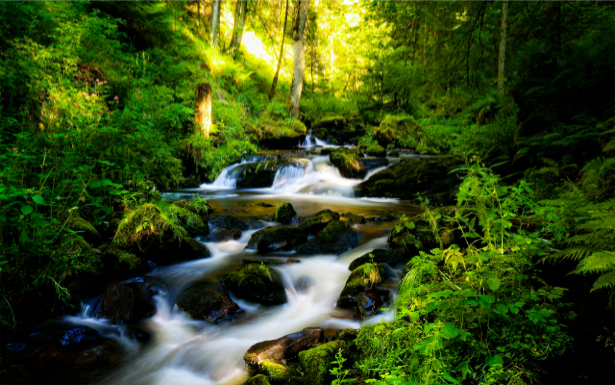 Фотообои с природой горный водопад (nature-00027)