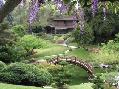 Фотообои красивый сад японский (nature-00247)