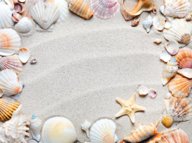 Фотообои красивые ракушки на песке (sea-0000103)