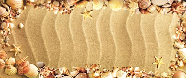 Фотообои для ванны ракушки на песке (underwater-world-00071)