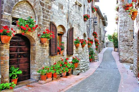 фотообои улица с цветами (city-1438)