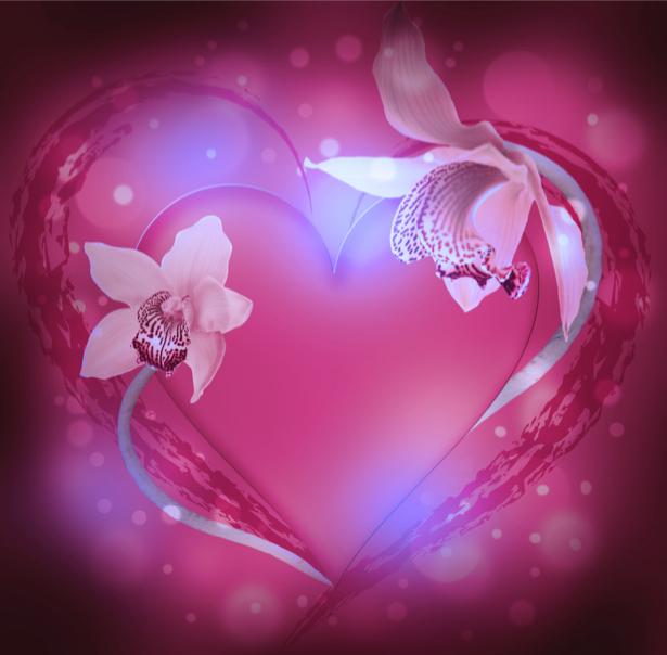 Сердце из орхидеи - Фото обои на стену (flowers-0000391)