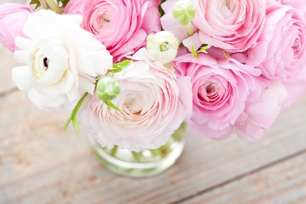 Фотообои Чайная роза (flowers-786)