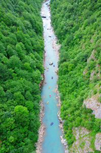 Фотообои река Тара в Черногории (nature-870)