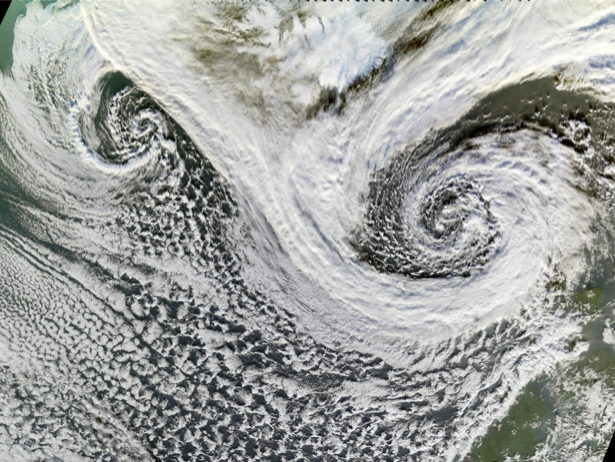 Фотообои причуды ветра (terra-00100)