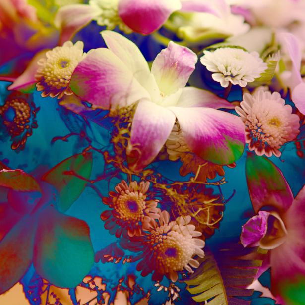 Фото обои фон цветочный (flowers-0000529)